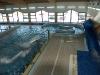 11. Pływalnia